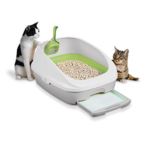 top 10 best cat litter box for your kitty